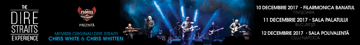 Concerte The Dire Straits Experience