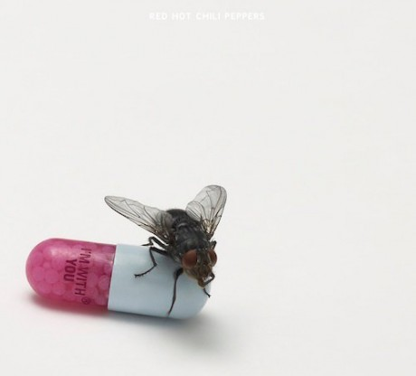 "Coperta Album Red Hot Chili Peppers - ""I'm With You"""