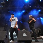 Concert Paraziții, 13 august 2011, București (credit foto:Alexandra Necula)