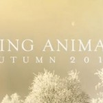 Soundgarden King Animal Worse Dreams Video Preview