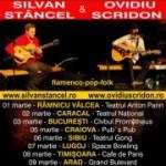 Poster-Silvan-Stancel-Ovidiu-Scridon-2013