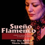 poster_flamenco_serendipity_15_februarie_2013