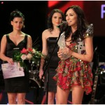 Andra la Premiile Muzicale Radio România 2013