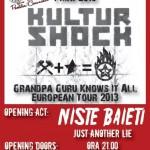 poster-concert-1-mai-2013-vama-veche-kultur-shok-niste-baieti