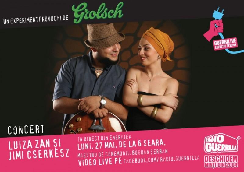poster-concert-luiza-zan-guerrilive