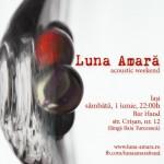 poster-concert-luna-amara-iasi-1-iunie-2013