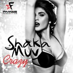 "Shaka Muv - ""Crazy"" single cover"