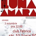 afis-luna-amara-concert-club-fabrica-bucuresti-5-octombrie-2013