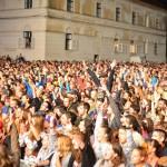 Publicul în cea de-a doua zi de Electric Castle Festival 2014