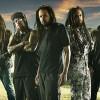 Program și reguli de acces la concertul Korn