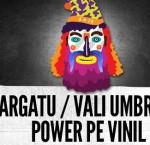 Afiș concert Argatu, Vali Umbră și Power pe vinil în B52