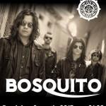 Concert Bosquito în Phoenix Club pe 8 martie 2015