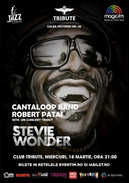 Cantaloop featuring Robert Patai - Stevie Wonder Tribute