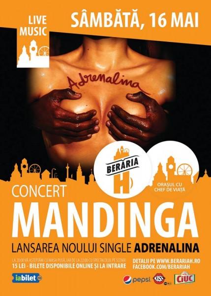 Afiș concert Mandinga la Berăria H 16 mai 2015
