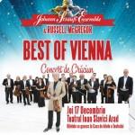 Afiş Johann Strauss Ensemble la Arad 2015