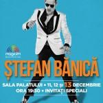 afis-stefan-banica-concert-sala-palatului-13-decembrie-2015
