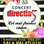 afis-directia-5-concert-bucuresti-2016