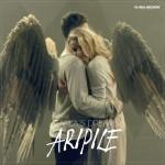 Carla s Dreams - Aripile