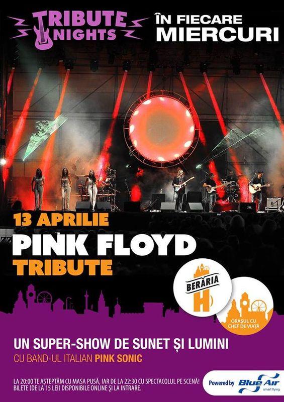 Pink Floyd Tribute la Berăria H