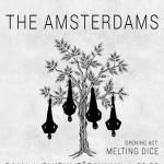 afis-concert-the-amsterdams-clubul-taranului-mai-2016