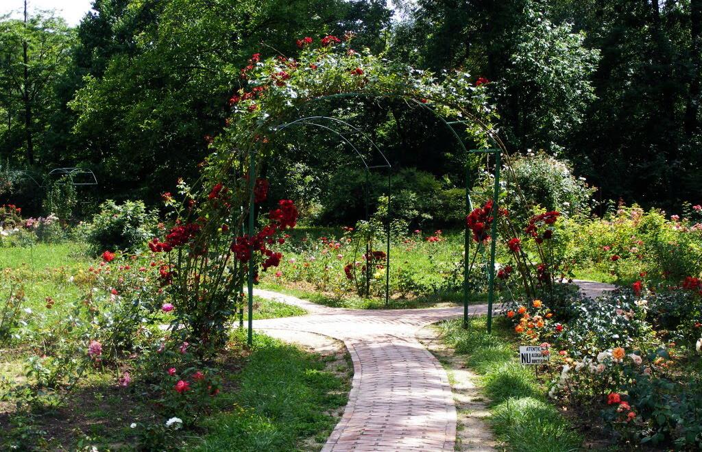 Grădina Botanică București din București