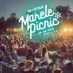 afis-marele-picnic-shortsup-2016