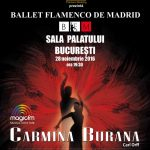afis-ballet-flamenco-de-madrid-spectacol-sala-palatului-2016