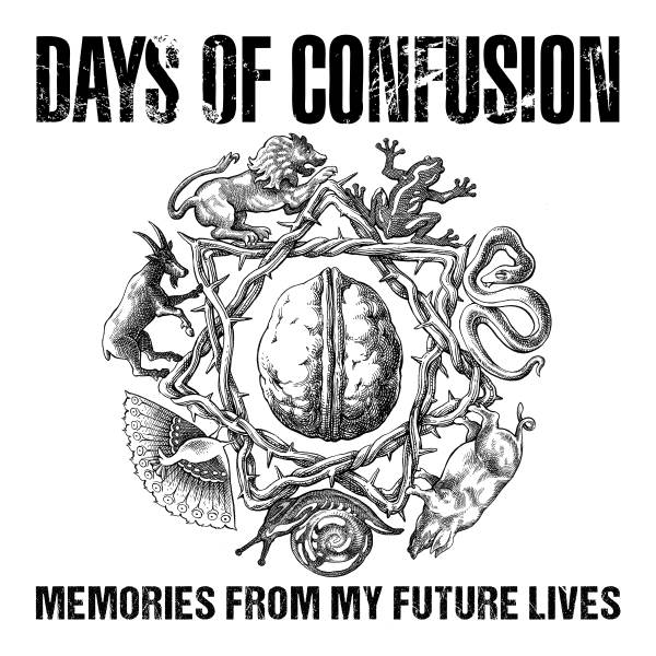 cover-artwork-days-of-confusion