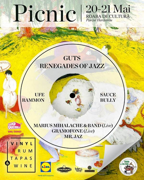 Picnic with Vinyl, Rum, Tapas & Wine la Parcul Herăstrău