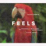 Coperta Single Calvin Harris Katy Perry Big Sean Pharrell Feels