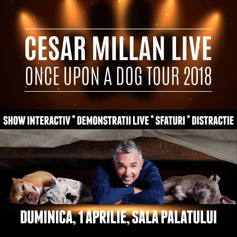 Cesar Millan Live - Once Upon a Dog la Sala Palatului