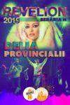 Revelion 2019 cu Delia și Provincialii