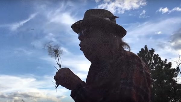 Neil Young + Promise Of The Real - Almost Always