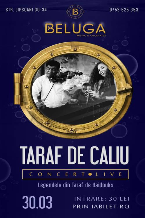 Taraf de Caliu la Beluga Music & Cocktails