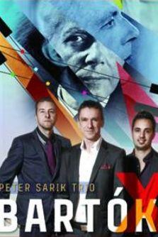 Peter Sarik Trio la Filarmonica de Stat Sibiu - Sala Thalia