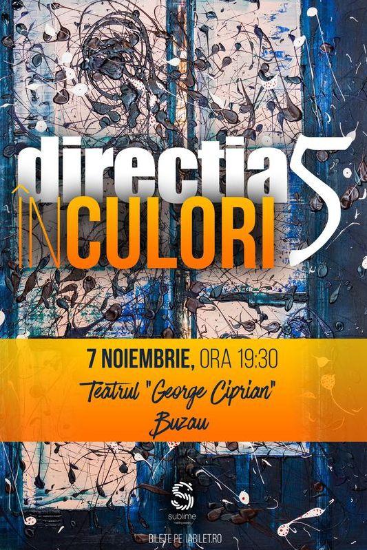 Direcția 5 - În culori la Teatrul
