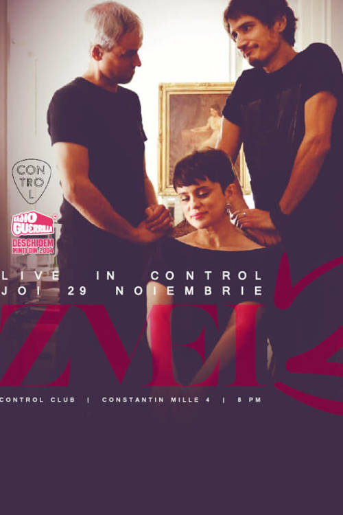 ZMEI3 la Club Control