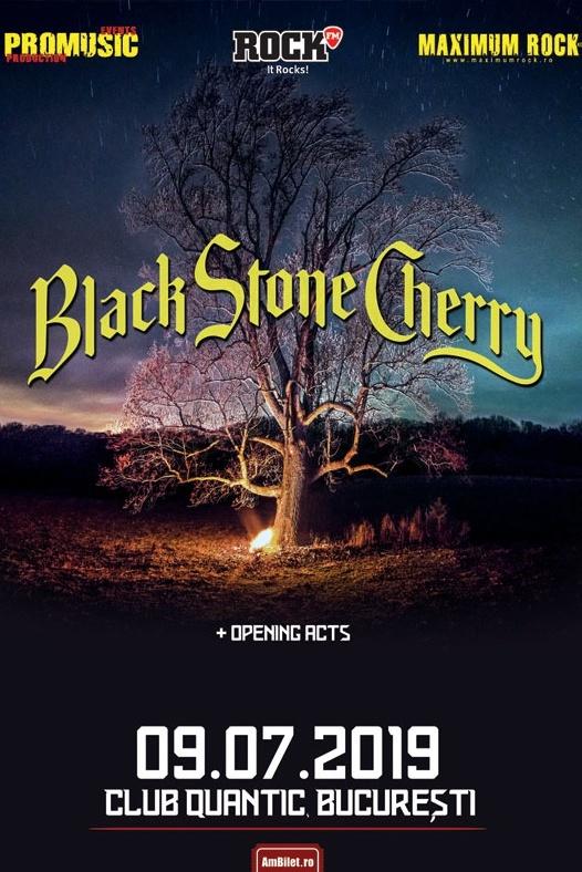 Black Stone Cherry la Quantic Club