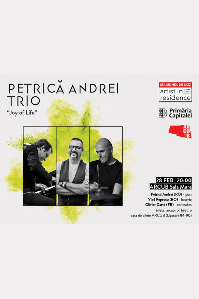 Petrică Andrei Trio -