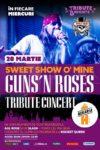 Sweet Show O' Mine // Guns N' Roses Tribute