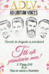 Ad Libitum Voices