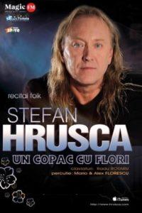 Ștefan Hrușcă - Un copac cu flori