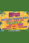 concerte Concerte din Romania el carrusel festival 2019 100x150