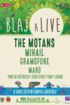 concerte Concerte din Romania afis blaj alive festival 2019 100x150