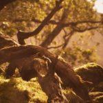 Lyric Video Nightwish Harvest