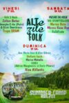 ALTe zile FOLK - Summer Camp Brezoi