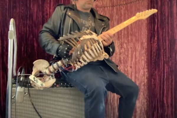 Schelet transformat în chitară