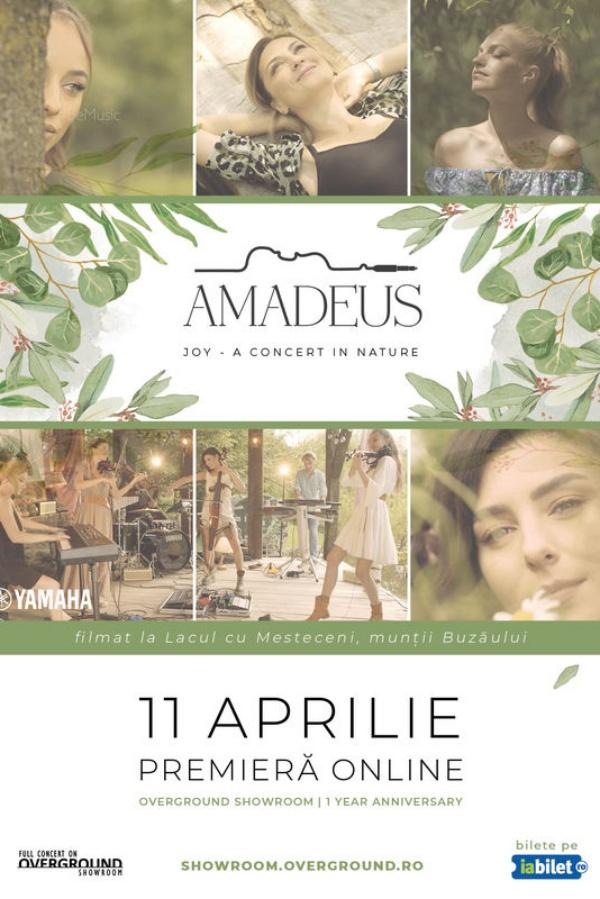 Overground Showroom: Amadeus la Overground Showroom