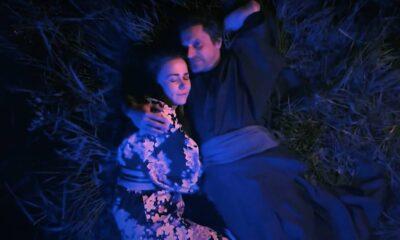 Elven Bird feat. Dan Byron- The Japanese Tree