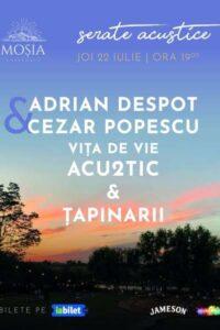 Vița de Vie Acu2tic & Țapinarii